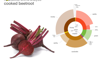 Aroma profile of cooked beetroot . Credit: Foodpairing