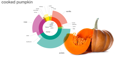 Aroma profile of cooked pumpkin . Credit: Foodpairing