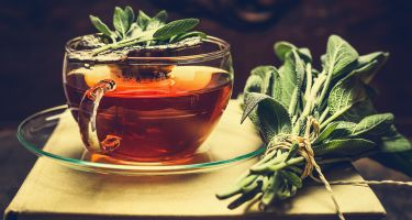 Prior to saffron, Adrian investigated the effect of sage on cognitive activity… .