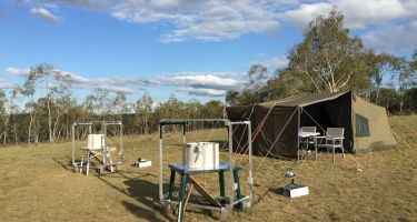For their experiment, the researchers used a custom-madeoutdoor flight simulator… . Credit: David Dreyer