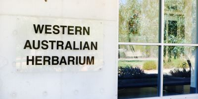 Picture This: A quick tour of the Western Australian Herbarium