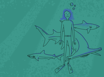 Are Sharks Just Misunderstood?