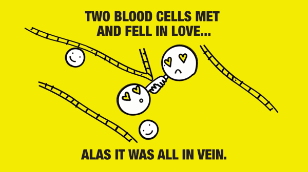 Two blood cells met and fell in love.. VIDEO