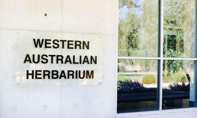 The Western Australian Herbarium