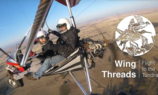Wing Threads: Flight to the Tundra