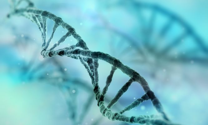 Genome research produces new anti-malarial drug targets