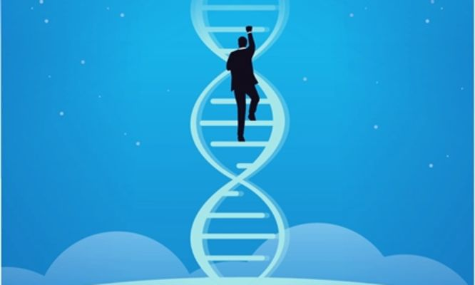 Are your genes your destiny? The science of Gattaca