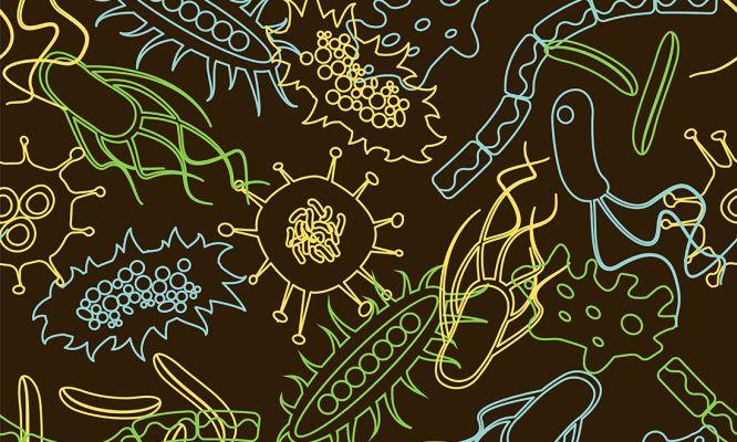 Bacteria pattern
