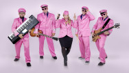 Pink Party Plane