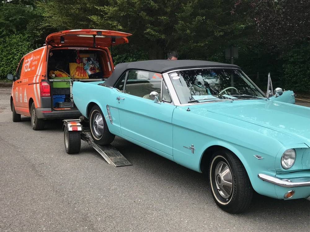 Timeline post: My beautiful 1965 Mustang