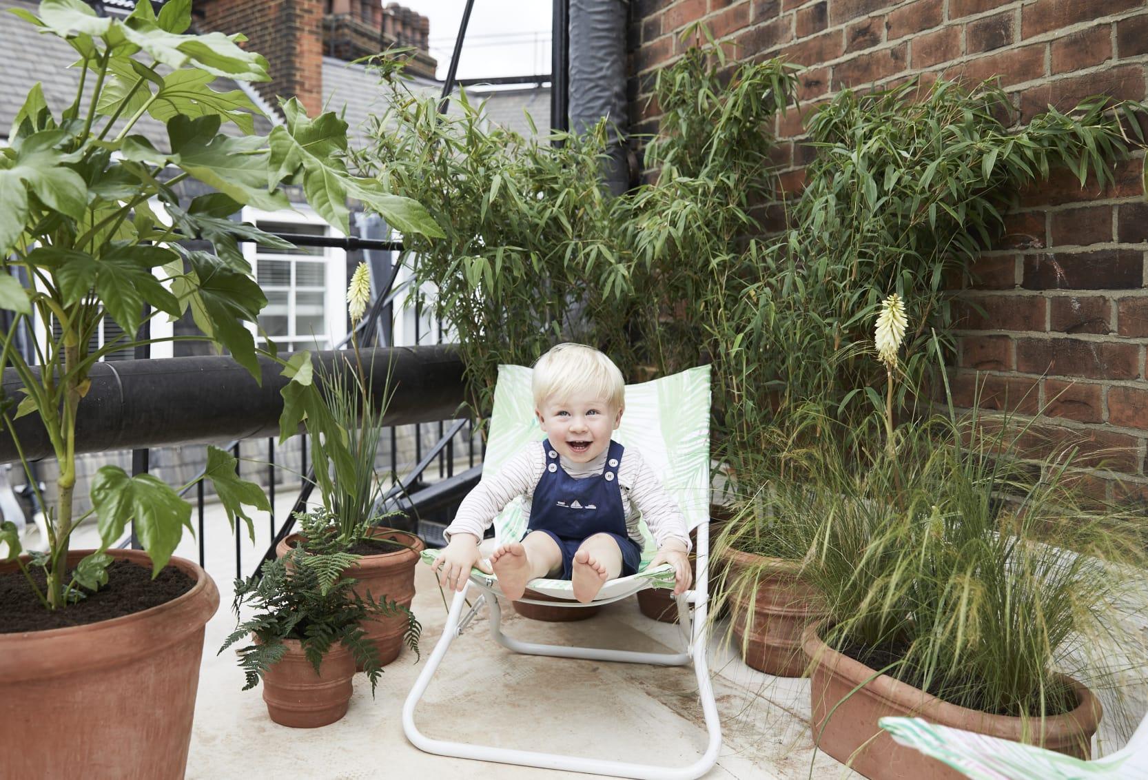 Plantes sans danger pour les enfants et les animaux