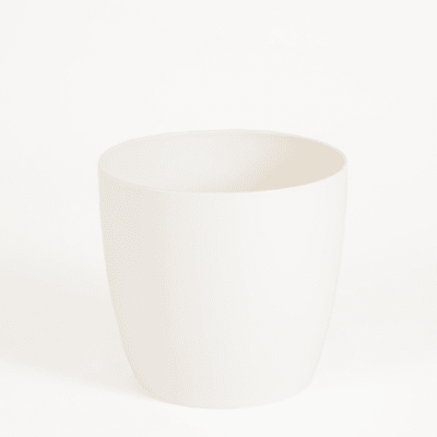 20cm wide curve-edged pot