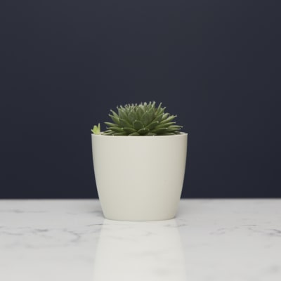 7cm wide curve-edged pot