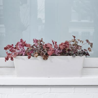 Recycled Trough