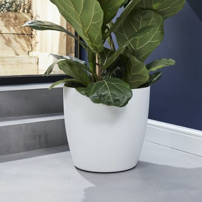 Curved edged pot