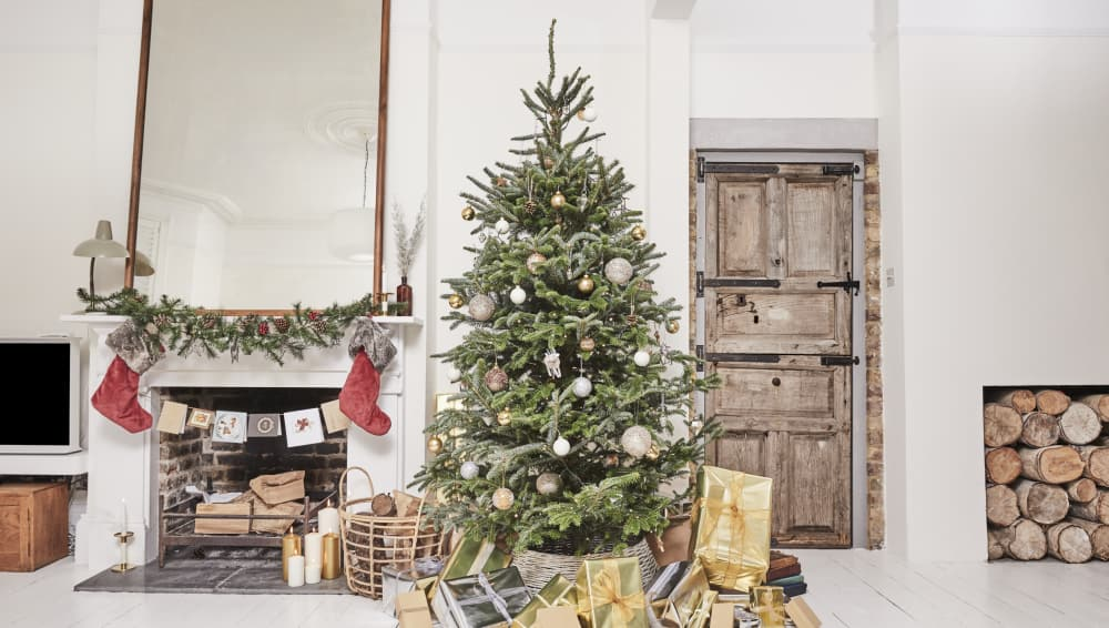 christmas trees real vs fake urban jungles delivered patch