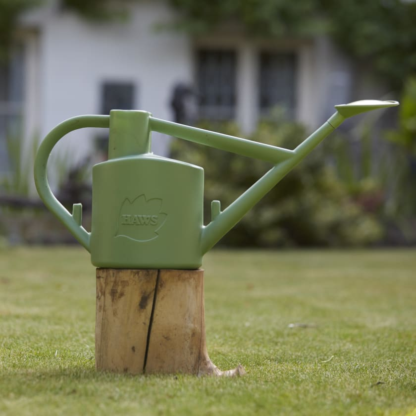 Haws Sage Watering Can