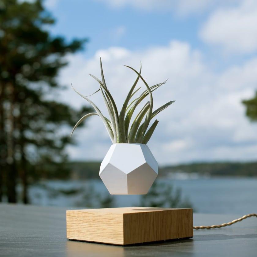 levitating plant pot pots patch