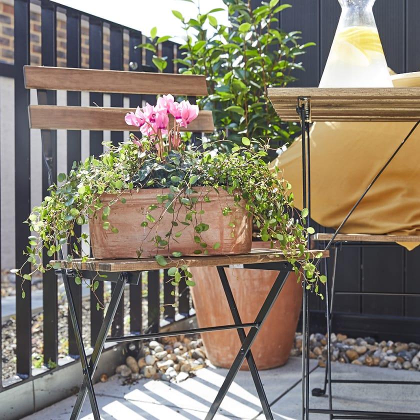 Oval terracotta pot