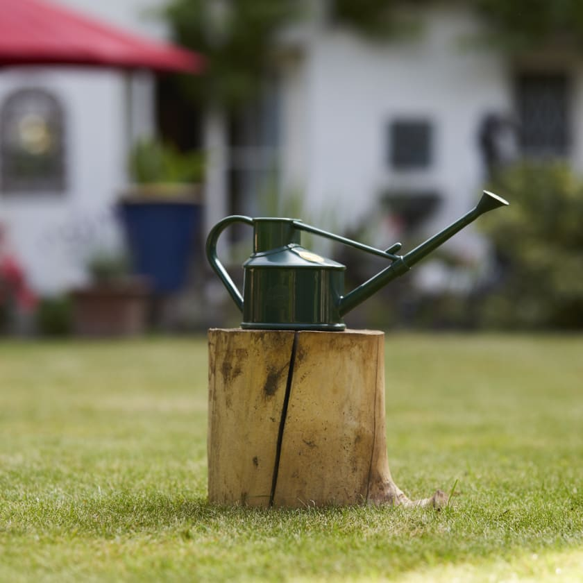 Haws Dark Green Watering Can
