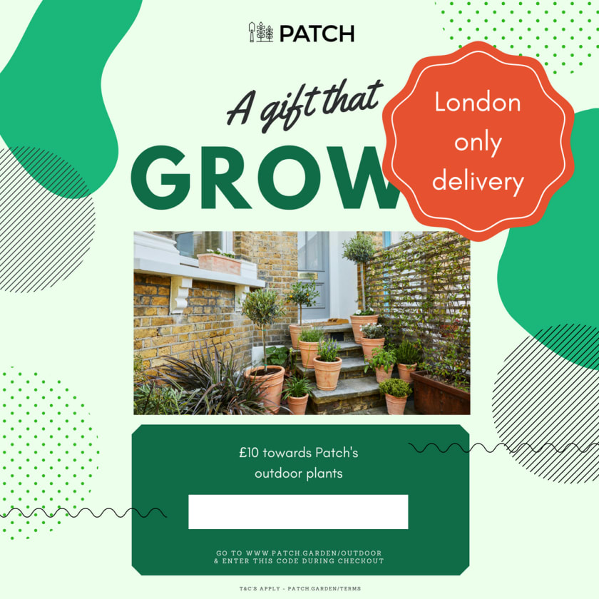patch garden products
