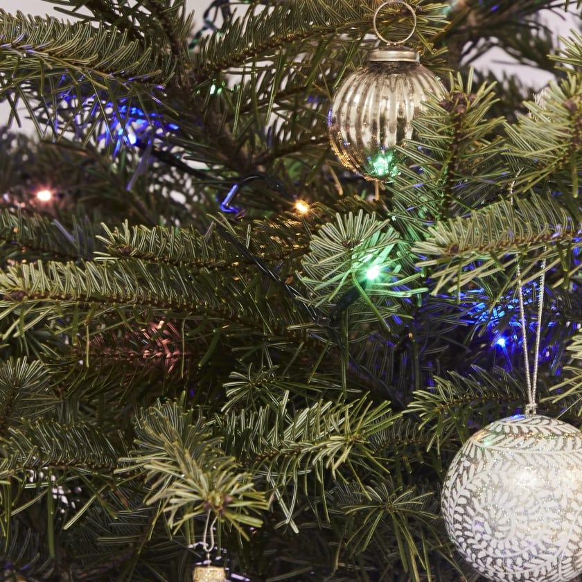 Christmas tree lights coloured