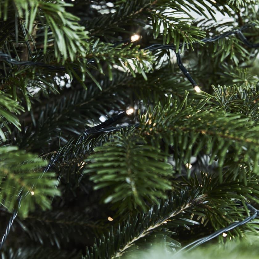 Warm white Christmas tree light