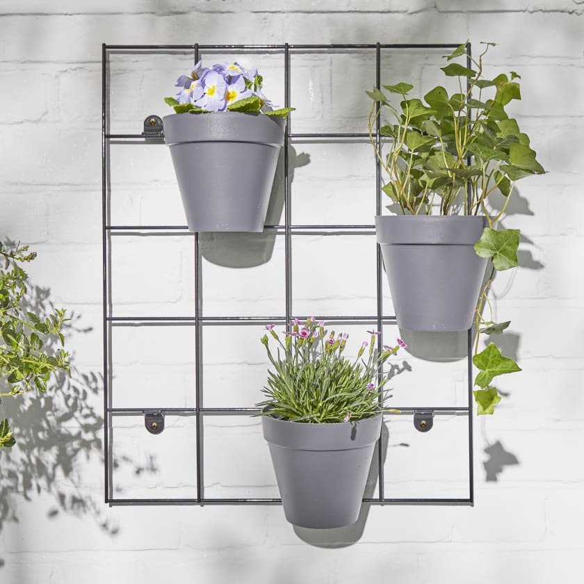 Outdoor Plant Wall Rack Plant Pots Online London Patch