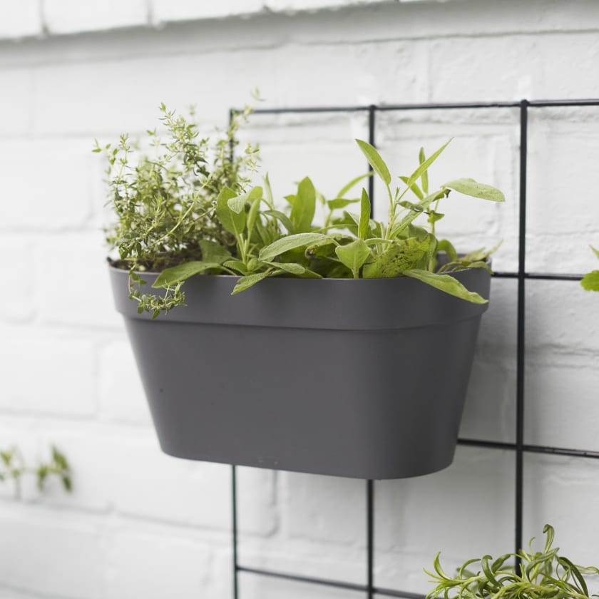 double hanging wall pot
