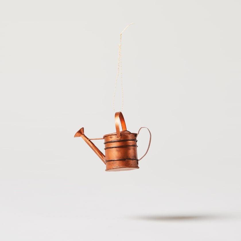 bronze watering can