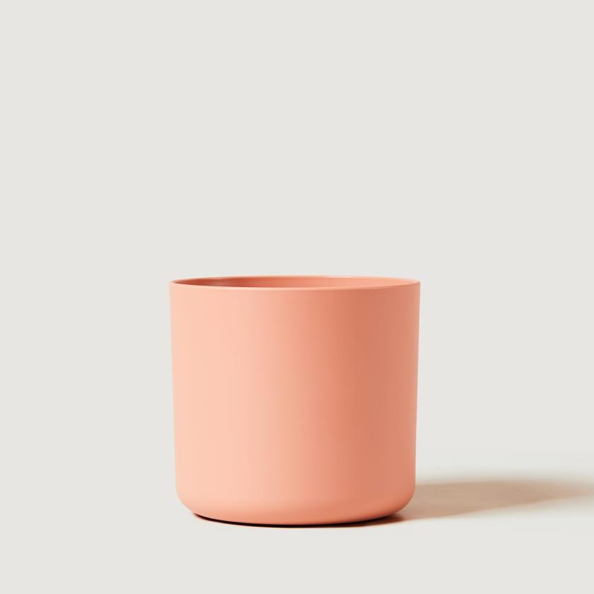 16cm Pink studio