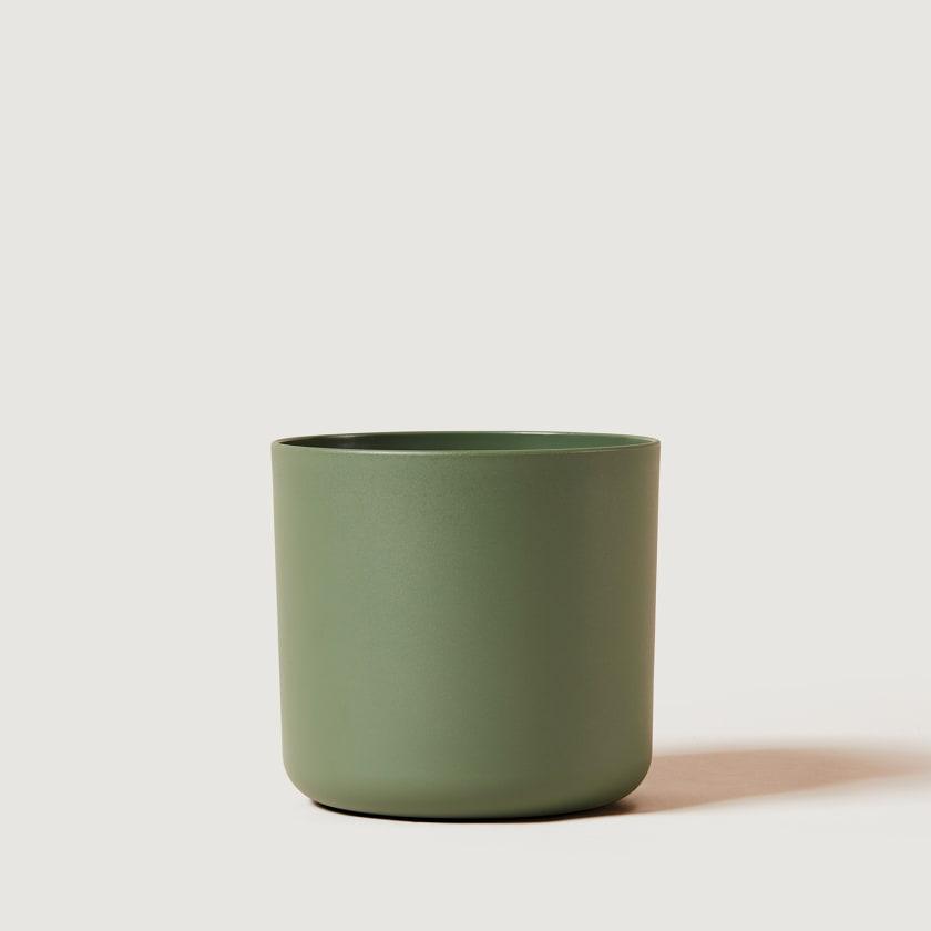 16cm green studio
