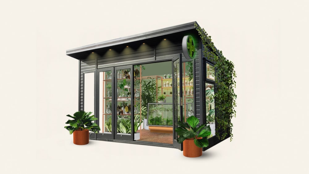Concept art of the Pharmacy of House Plants