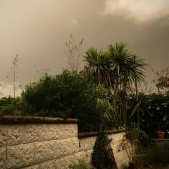 Dark, grey skies over my back garden