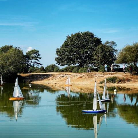 Sailboats on a lake.