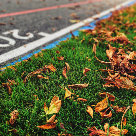 Close up of a tarmac velodrome, with autumn leaves on the grass beside it.