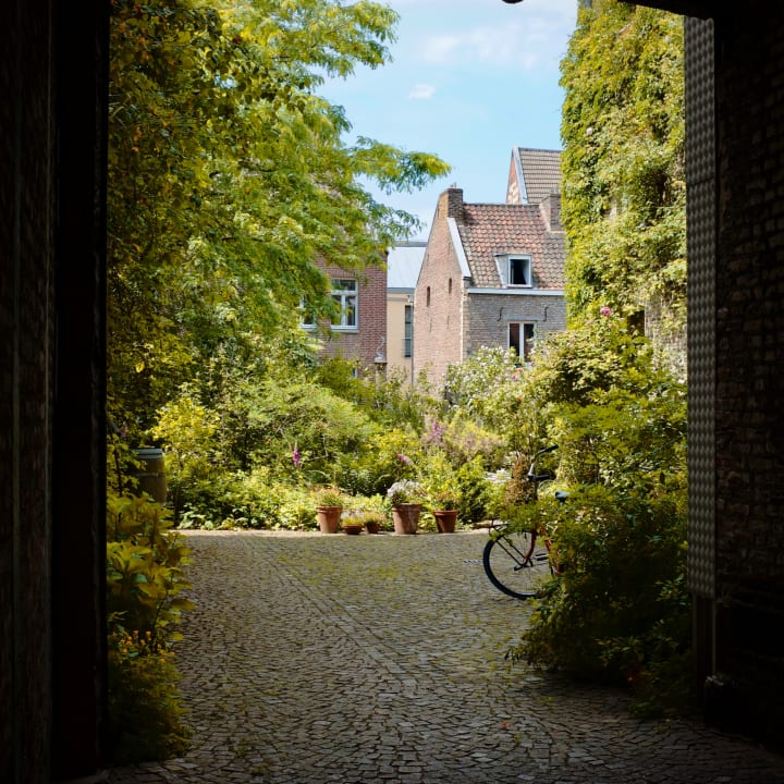 View into a Dutch garden.