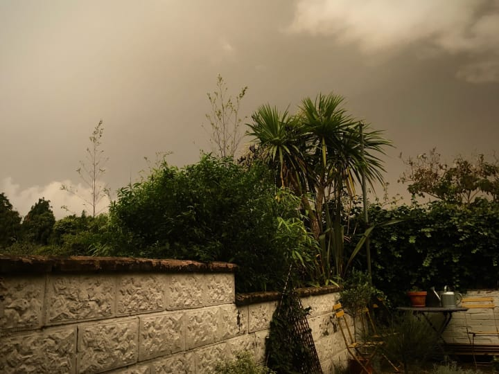 Dark, grey skies over my back garden