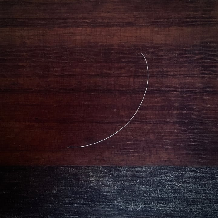 A single, short grey hair.