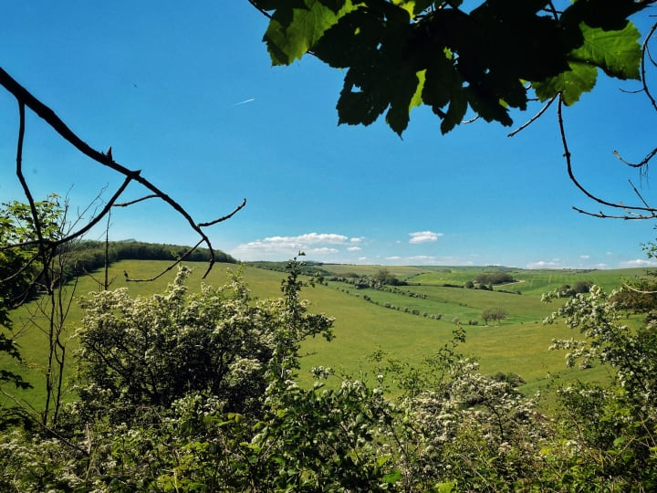 Rolling green hills of the South Downs, near Falmer.