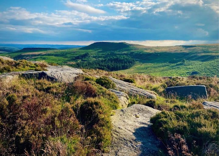 Stones, heather and distant moorland.