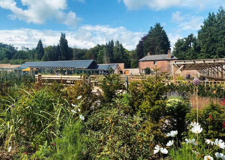 View across the walled garden.