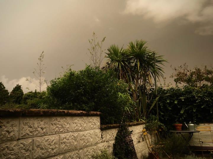 Dark, grey skies over my back garden.