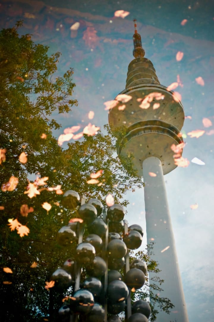 Hamburg's TV Tower is relfected in a pool of water scattered with fallen autumnal leaves.