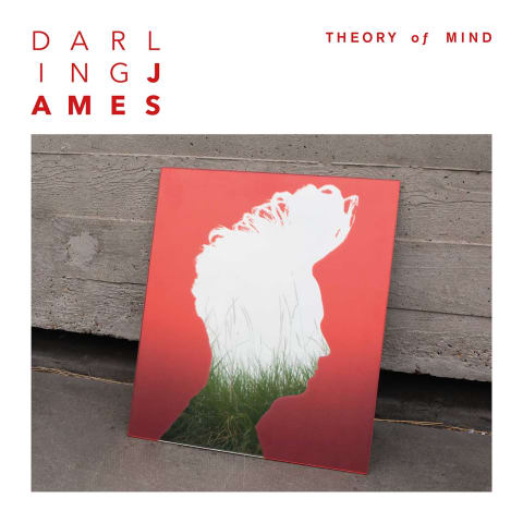 Darling James Theory of Mind Cover