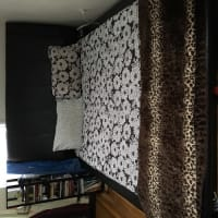 Bed set , Queen sized bed includes baseboard dresser with mirror no scratches or stains. Basically new