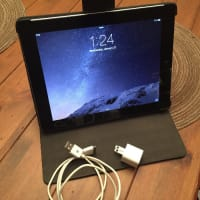 16GB iPad 2nd Gen WiFi and 3G, Electronics, iPad 2nd Gen 16gb Wifi and 3G w/case and charger, 2012, iPad is in good working condition. It has been reset with all data wiped and has only basic IOS. I am including a Belkin leather case. I have the original charger and cable., It was with AT&T