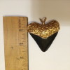 Gold Crusted Prehistoric Shark Tooth Pendant