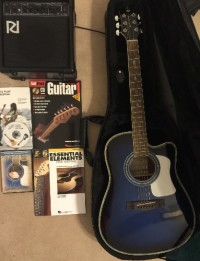 Guitar, Musical Instruments, Equipment, Limited Edition Randy Jackson Guitar, faux snakeskin gig bag, picks, strings, amp, and instructional booklets.