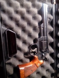 gun, Gun, safe box, 6 blue Smith and Wesson 357 magnum
